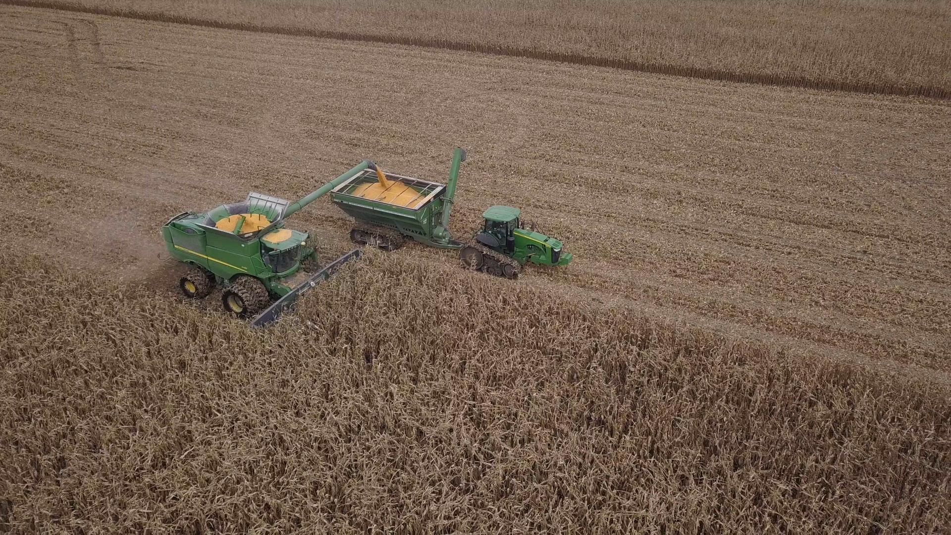 181015PIVOT_048_BROLL Pivot Bio Harvest Combine Load Auger Wagon Drone